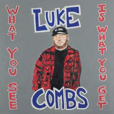What You See Is What You Get mp3 Album by Luke Combs