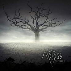 Deception mp3 Album by Axe Toss