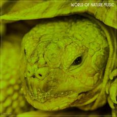 World Of Nature Music mp3 Compilation by Various Artists