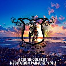 Acid Singularity: Meditation Paradise, Vol.1 mp3 Compilation by Various Artists