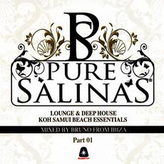 Pure Salinas: Koh Samui Beach Essentials, Part 01 mp3 Compilation by Various Artists
