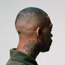 100% Publishing mp3 Album by Wiley