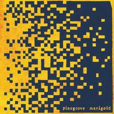Marigold mp3 Album by Pinegrove