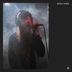 Wolf King on Audiotree Live mp3 Live by Wolf King