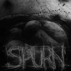 Comfort in Nothing mp3 Album by Spurn