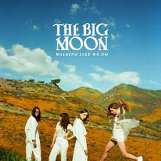 Walking Like We Do mp3 Album by The Big Moon