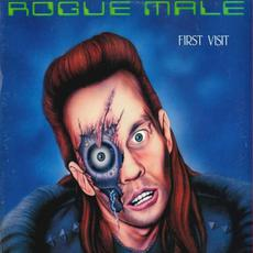 First Visit (Re-Issue) mp3 Album by Rogue Male