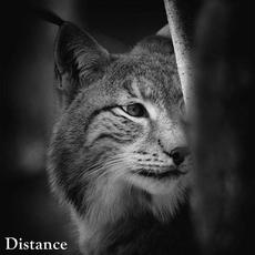 Distance mp3 Album by The Ultra Lancers
