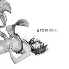 Waking Hours mp3 Album by Cold War Everyday