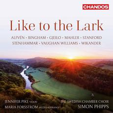 Like to the Lark mp3 Compilation by Various Artists