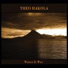 Water Is Wet mp3 Album by Theo Hakola