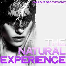 The Natural Experience: Chillout Grooves Only mp3 Compilation by Various Artists