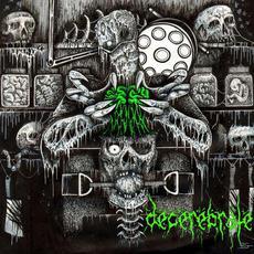 Decerebrate mp3 Album by Decerebrate