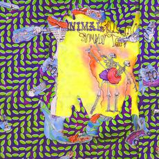 Ballet Slippers mp3 Artist Compilation by Animal Collective
