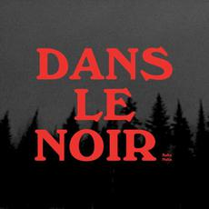 Dans le noir mp3 Album by Safia Nolin
