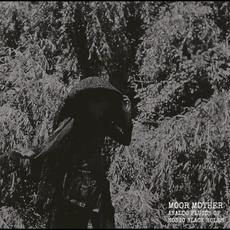 Analog Fluids of Sonic Black Holes mp3 Album by Moor Mother