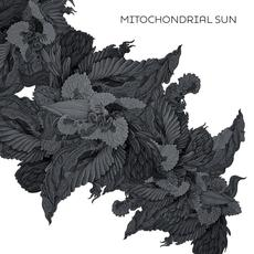 Mitochondrial Sun mp3 Album by Mitochondrial Sun