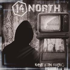 What is the Feeling mp3 Album by 14 North