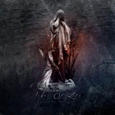 Seasons Within mp3 Album by Ashes of Life