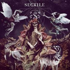 Falls Apart mp3 Album by Sectile