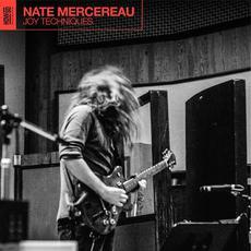Joy Techniques mp3 Album by Nate Mercereau