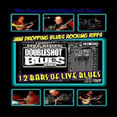 12 Bars Of Live Blues mp3 Live by Doubleshot Blues Band