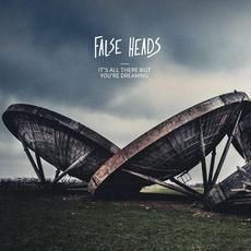 It's All There but You're Dreaming mp3 Album by False Heads