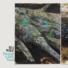 Through a Dark Wood mp3 Album by Sea Wolf