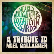 A Tribute to Noel Gallagher mp3 Artist Compilation by Noel Gallagher's High Flying Birds
