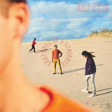 Snapshot of a Beginner mp3 Album by Nap Eyes