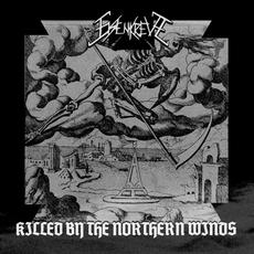Killed By The Northern Winds mp3 Album by Eisenkreuz