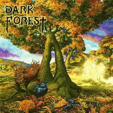 Beyond The Veil mp3 Album by Dark Forest