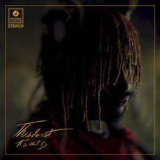 It Is What It Is mp3 Album by Thundercat