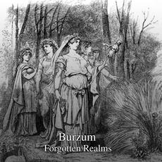 Forgotten Realms mp3 Single by Burzum