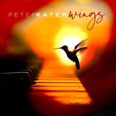 Wings mp3 Album by Peter Kater