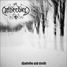 Shadows and Snow mp3 Album by Netherbird