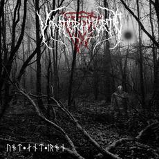 Wood and Iron mp3 Album by Vinterhjerte