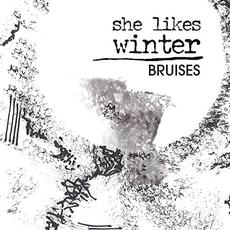 Bruises mp3 Album by She Likes Winter