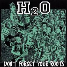 Don't Forget Your Roots mp3 Album by H2O