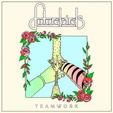 Teamwork mp3 Album by Futurebirds