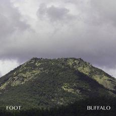 Buffalo mp3 Album by Foot