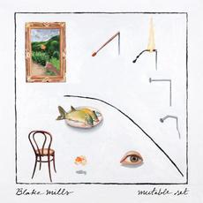 Mutable Set mp3 Album by Blake Mills