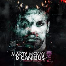 Matrix Theory II mp3 Album by Marty McKay & Canibus