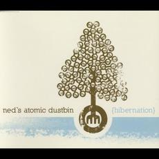Hibernation mp3 Single by Ned's Atomic Dustbin