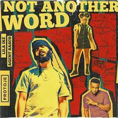 Not Another Word mp3 Single by Protoje, Lila Iké