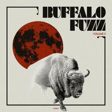 Vol. II mp3 Album by Buffalo Fuzz