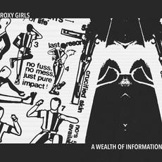A Wealth of Information mp3 Album by Roxy Girls