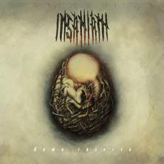 Homo insecta mp3 Album by Insaniam