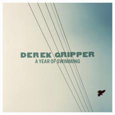 A Year of Swimming mp3 Album by Derek Gripper