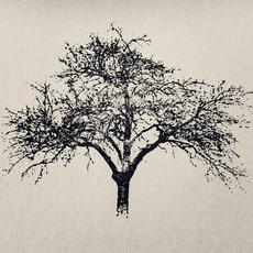 Plangent #012 mp3 Album by Recondite